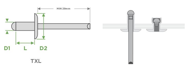 rivetti-sariv-txl-testa-extra-larga-sezione-impiego